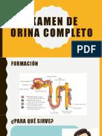 Examen de Orina Completo