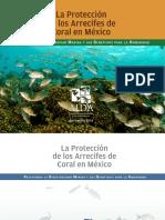 Informe Corales Mexico