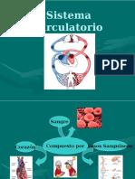 Sistema Circulatorio (1)