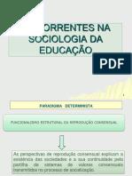2licenciatura.pdf