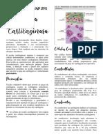 Resumo Tecido Cartilaginoso