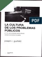 Cultura de Los Problemas Publicos.