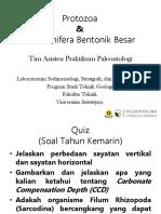 Protozoa Dan Foraminifera Bentonik Besar