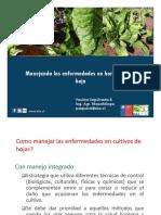 Curso de Gasfiteria e Instalaciones Sanitarias PDF