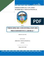 Monografia Principio de Concentracion