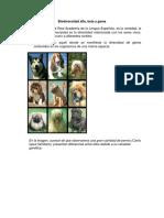 Desarrollo Tipos alfa, beta y gama.pdf