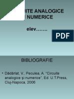 CIRCUITE1