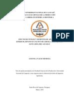 EFECTOS_DE_NIVELES_Y_MOMENTOS_DE_APLICAC.docx