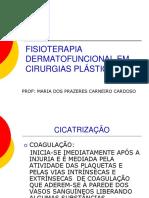 Fisioterapia DermatoFuncional - GUIRRO(Pag.1-90)