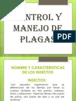 EVIDENCIA CONTROL Y MANEJO DE PLAGAS.pptx