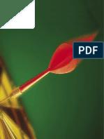 Handbuch zur Wahlkampagne (Pdf).pdf