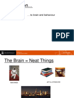 Brain Lecture notes - Psychology 101