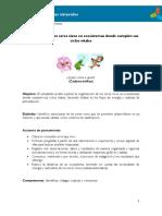 el reciclaje 2019.pdf