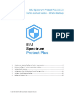 SPP 10.1.3 Hands-on Lab Guide Oracle Eng.r1.pdf