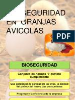 Bioseguridad en Granjas Avicolas