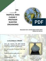 Diapositivas La Guanabana (1)