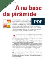 AAAA_na_base_da_pirâmide.pdf