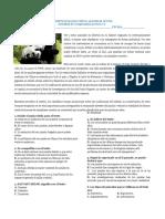 EJERCICIOS DE COMPRENSION LECTORA.docx