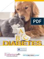 LIBRO_ABC_DIABETES_NEUTRO__1_.pdf