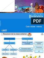 Clase 8 Ciclo Celular Mitosis 2016