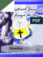 134327454-Directiva-2013-docx