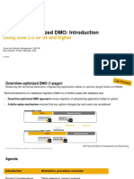 Downtime-optimized DMO Intro 2019 01