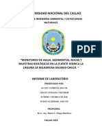 Informe de Chilca Final