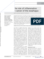 Role of Inflammation in Esophageal Cancer