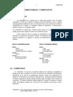 I.-COMBUSTION-.doc