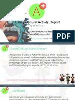 Essay Cultural Activity Report