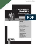 05. Mayo Sol. Lab 2017.pdf