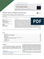 Molecular targets of metformin antitumor action