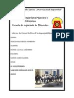 Informe Del Ing Cano