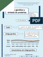 Código genético y síntesis de proteínas