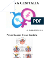 Sistem Genitalia