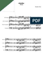 54332242-Celebre-Metais.pdf