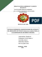 Pitahaya Proyecto Utrafinal (2)