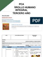 PCA DHI TERCERO.docx