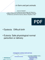 Lecture 7 Dystocia in Farm Animals