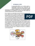Los Peligros de Las Enfermedades No Transmisibles (Fiorella Leyva)