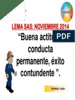 11 Lema Sas - Noviembre 2014
