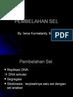 reproduksi-sel