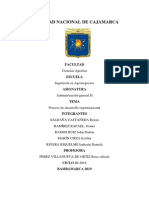 Etapas Del Proceso de Desarrollo Organizacional PDF