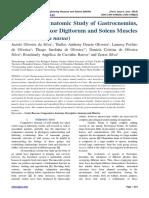Macroscopic Anatomic Study of Gastrocnemius, Superficial Flexor Digitorum and Soleus Muscles of Coati (Nasua nasua)