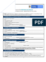 Anexo 1 - Formulario de participación Persona Natural 2019.pdf