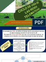 Ciclo de Vida de Las Redes Telemáticas
