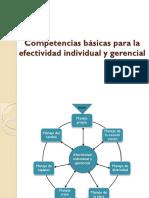 Competenecias Basicas Para La Efectivida Individual