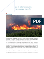 Efectos y Causas de La Contaminación Atmosférica Provocada Por Incendios Forestales