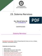 23_Sist Nervioso II