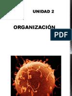 Diapositivas de Biologia Unidad 2